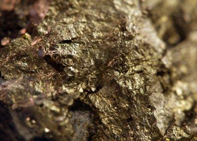 gold - mining